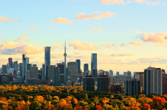 Toronto skyline with downtown, midtown, and urban tree canopy lit by setting sun in October 2016